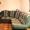 Продам мягкая мебель диван угловой и кресло #540417