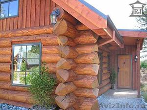 Продам лес круглый сосна, пихта, лиственница - Изображение #1, Объявление #1359461