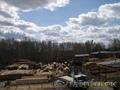 Продам действующий бизнес  в Томске -  пилораму