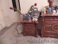 Продаем итальянский спальный гарнитур - Изображение #2, Объявление #491648
