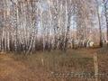 красивая земля от собственника - Изображение #3, Объявление #893682