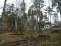 Земельный участок в сосновом бору, с. Елыкаево, Объявление #1606543