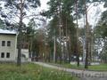 Земельный участок в сосновом бору, с. Елыкаево - Изображение #2, Объявление #1606543