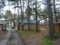 Земельный участок в сосновом бору, с. Елыкаево - Изображение #3, Объявление #1606543